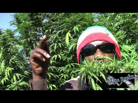 Marlon Asher - Ganja Cowboy [OFFICIAL VIDEO] By TRU REELZ PROD