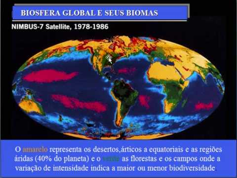 bioma tundra-prof.tanio