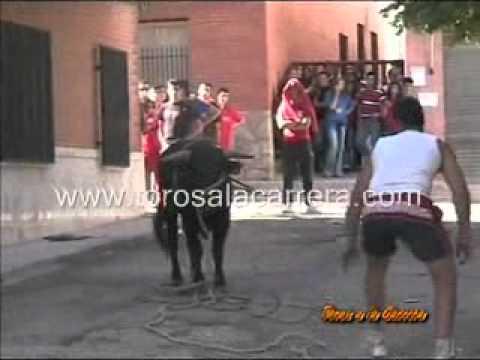 Encierros Villarejo de Fuentes 2005