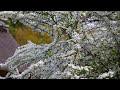 Фрагмент с начала видео Daio Wasabi Farm - Nagano - 大王わさび農場 - 4K Ultra HD