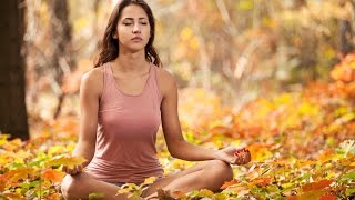 6 Hour Healing Music: Meditation Music, Soothing Music, Soft Music, Relax Mind Body, Yoga ☯677
