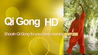 Qi Gong HD (High Quality) SHAOLIN QI GONG for your early morning exercise