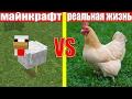 МАЙНКРАФТ ПРОТИВ РЕАЛЬНОЙ ЖИЗНИ 7 ! MINECRAFT VS REAL LIFE