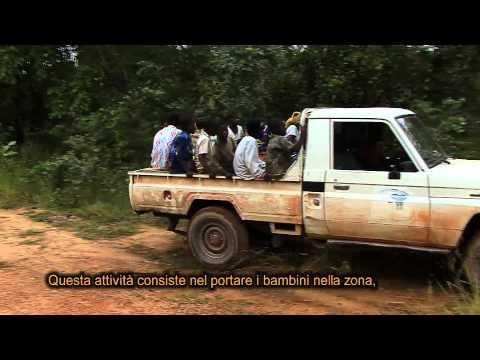 1. Educare...- Parte 2 - Educare allo Sviluppo Sostenibile e alla Solidarietà Internazionale