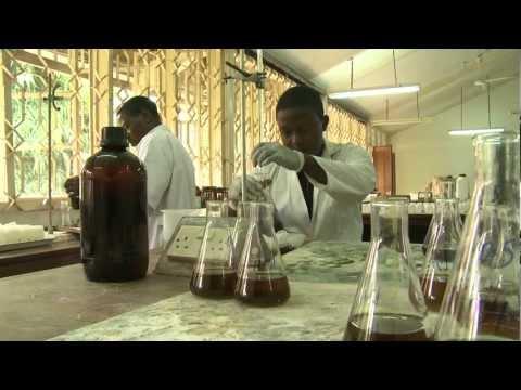 Seguimiento del carbono en el suelo en Tanzanía