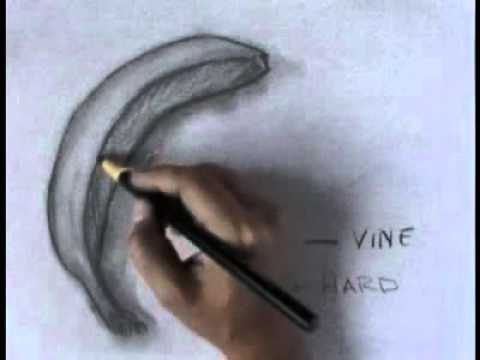 Charcoal Drawings - Learn to draw with charcoal