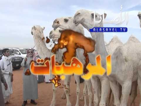 مسيرة منقية حمد زايد الظويفري المطيري