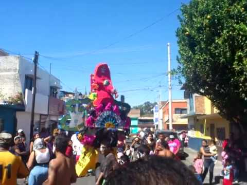 "Toritos de Petate "" Misterioso y Venado"" Carnaval 2012. 