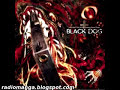 Hellsing OVA Series OST BLACK DOG - TARGET INSIGHT