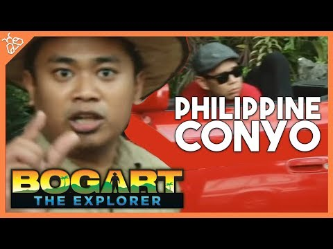Bogart the Explorer: The Philippine Conyo