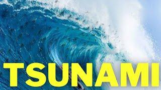 Entenda como se formam as grandes ondas conhecidas como tsunamis