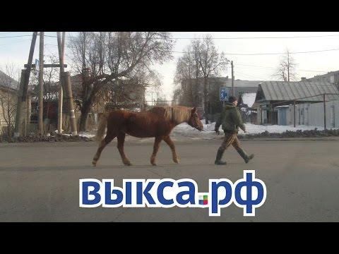 Стань участником новогоднего видео-поздравления на Выкса.РФ