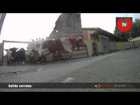 Salida de toros de los corrales de Santo Domingo