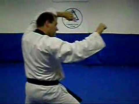 Dan Gun (Yellow belt form)