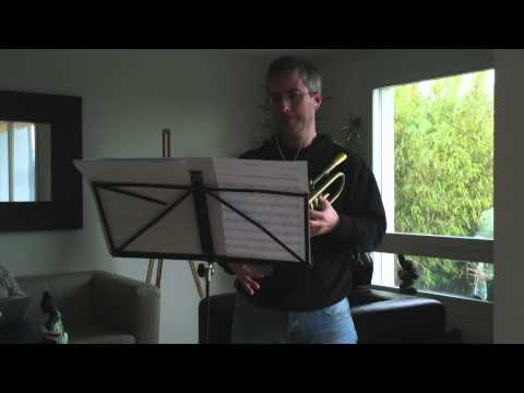 Adele's Skyfall, trumpet cover