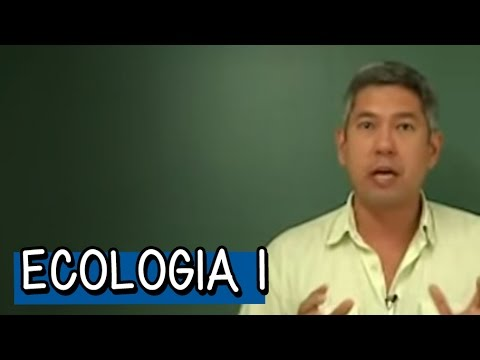 Biologia - Resumo para o Enem: Ecologia 1 - Biomas 1