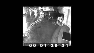 Хулиганы на Михайловской разбили цветочные вазы