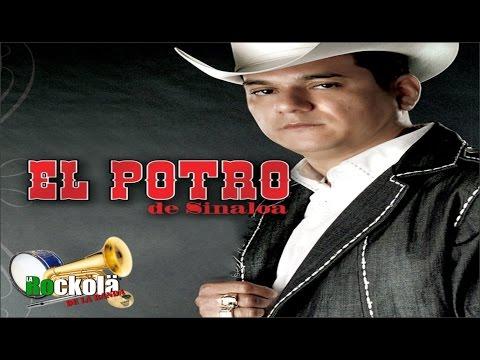 El Potro de Sinaloa / Jerarquia de Corridos Con Power Sinaloense