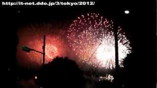 第24回 東京湾大華火祭 (2012年)
