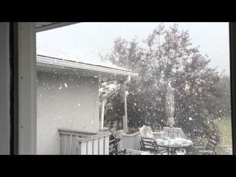 بالفيديو.. شاهد عاصفة برد شديدة تتسبب بخسائر تفوق الـ30 مليون دولار في جنوب كندا
