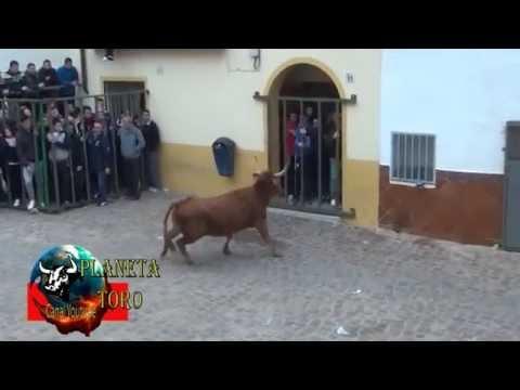2014 01 11 VEO EL PINCHO