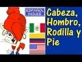 Aprendiendo Ingles: CABEZA,  HOMBRO , RODILLA Y PIE - con letra