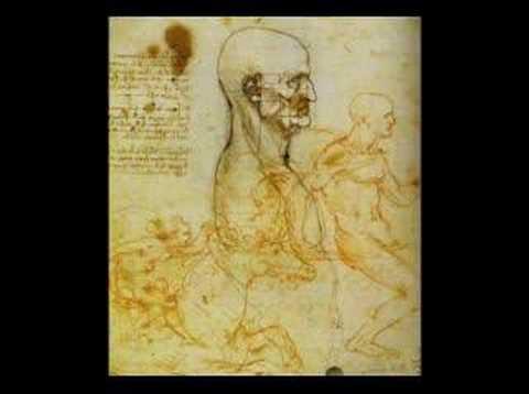 Leonardo da Vinci (Mozart's Requiem)