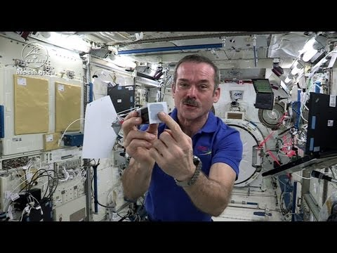 Astronaut Chris Hadfield Plays Jamie Hyneman and Adam Savage's Space Game on the ISS