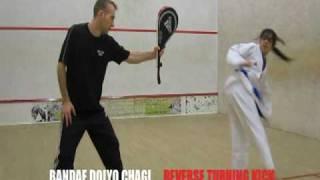 Taekwondo Tekme Uygulamaları