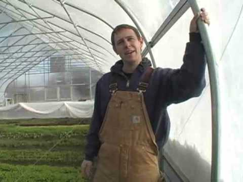 Hoophouse Production: Tips, Costs & Marketing