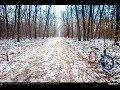 VIDEOCLIP Plimbare de decembrie cu bicicleta la Padurea Baneasa #2 [VIDEO]