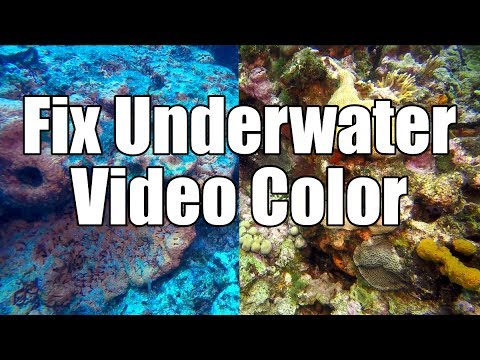 Best Gopro Accessories for Water