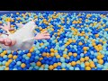 Фрагмент с начала видео - Booba - Playtime 🏀 New Episode 37 🎯 Funny cartoons for kids 🏐 Kedoo ToonsTV