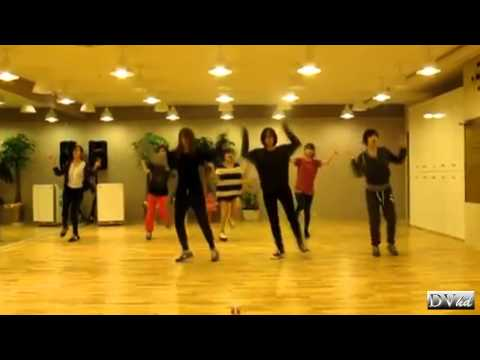 T-ara - Lovey Dovey (dance practice) DVhd