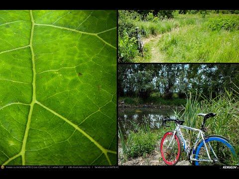VIDEOCLIP Cu bicicleta prin Bucuresti: Parcul Natural Vacaresti [VIDEO]