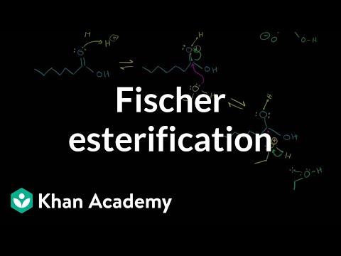 Fisher Esterification