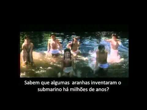 Lingua das mariposas_Epistemologia.wmv