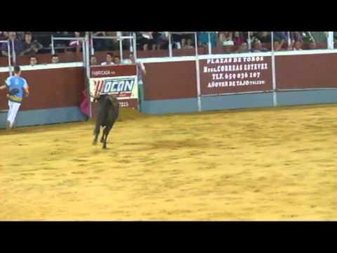 Concurso de Recortes en Chiva 2011