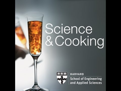 The Science of Paella | Lecture 6 (2012)
