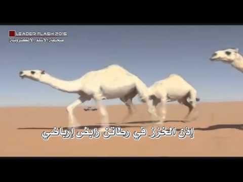 منقية رجل الأعمال عبدالله المعيقل الغريري الشمري | كلمات الشاعر عبدالكريم الجباري