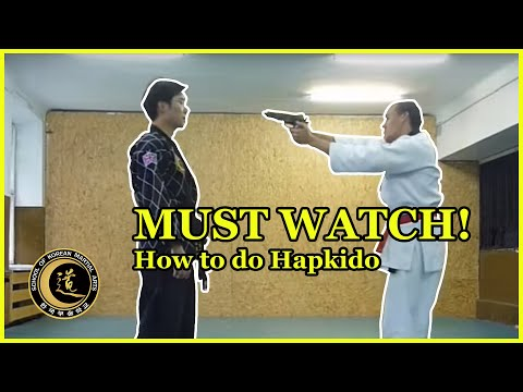 hapkido techniques (SKMA hapkido london - poland seminar 2010)