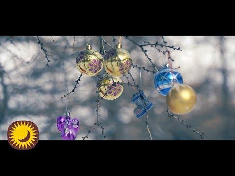 ВИДЕО: T.NARSAR - Ахин нэг шинэ жил