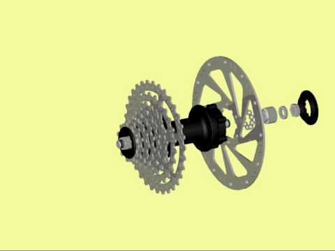 bicycle hub and cassette assembly