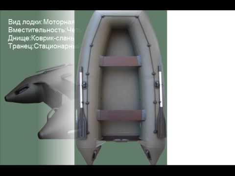 лодка спортекс шельф 330