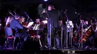 Симфонический оркестр «Brevis» в Житомире