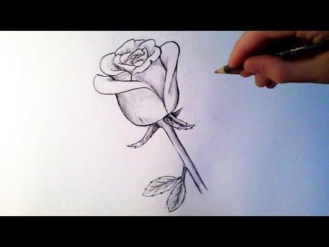 Comment dessiner une rose [Tutoriel]