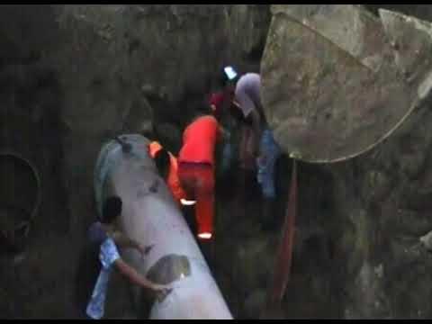 Trabajador quedó atrapado bajo el caño de agua cuando realizaban reparaciones