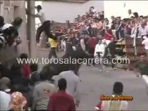 Encierros Chiloeches 2005