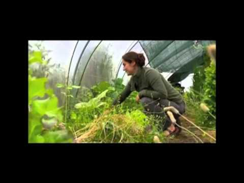 Quinta do Vale da Lama - Permaculture Institute in TV Program Biosfera RTP2