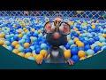 Фрагмент с конца видео - Буба все серии подряд 😊 сборник 42 мультиков про бубу 2019 от KEDOO Мультики для детей